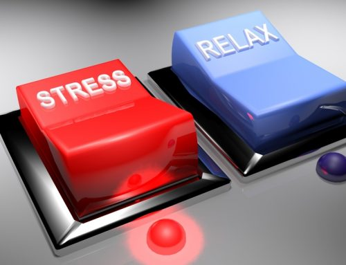 """FIGHT OR FLIGHT 101 """"The origins of our stress response system"""""""